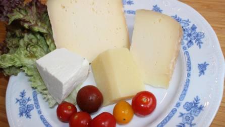 Käse-Verkostung bei Villa Maria