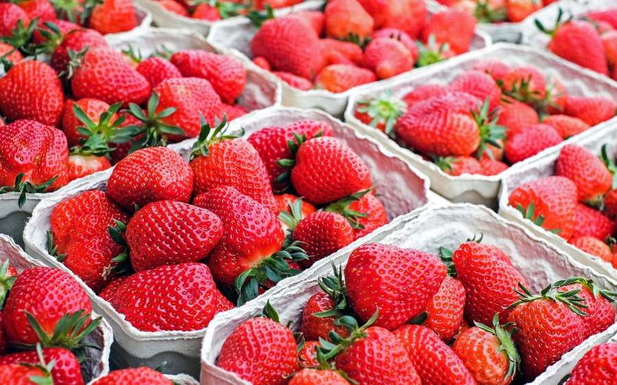 strawberries-1350482_1920