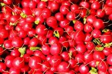 radishes-1623915_1280